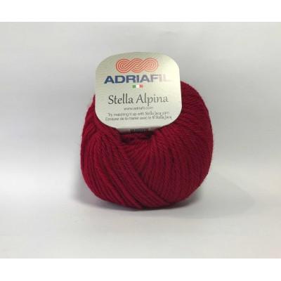 Stella alpina 48